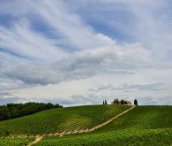 Panoramic drive to San Gimignano and Siena