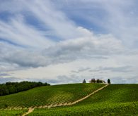 Panoramic drive to San Gimignano and Siena